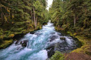 Río » Qué es, características, tipos, cómo se forman, flora, fauna, importancia