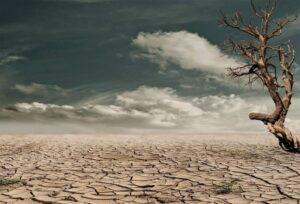Desertización » Qué es, características, por qué se produce, tipos, causas